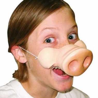 Varkens neus met elastiek masker