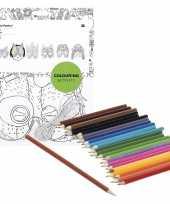 6x knutsel papieren maskers om in te kleuren incl potloden